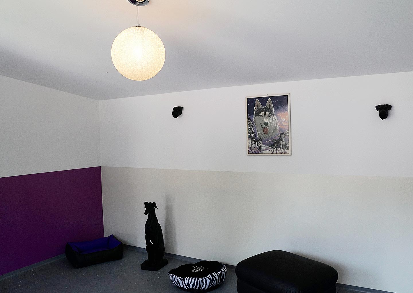 Hundehotel Anders!: Hotelzimmer